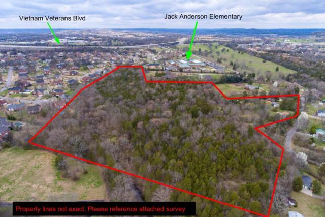 126 Avondale Access Road, Hendersonville, TN 37075 (MLS #1912558) :: RE/MAX Choice Properties