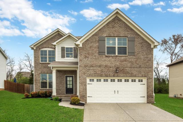 1019 Achiever Cir, Spring Hill, TN 37174 (MLS #1912636) :: The Milam Group at Fridrich & Clark Realty