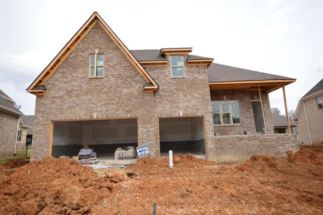 3019 Grunion Ln (344), Spring Hill, TN 37174 (MLS #1912838) :: Team Wilson Real Estate Partners