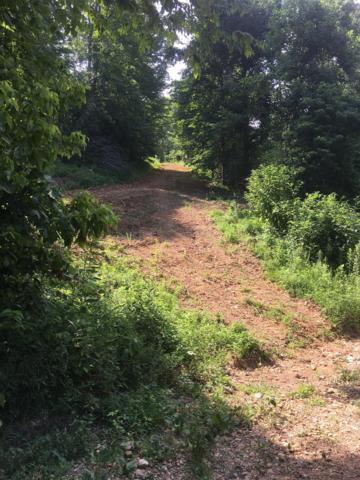 0 Countryside Dr, Dover, TN 37058 (MLS #1916027) :: NashvilleOnTheMove   Benchmark Realty