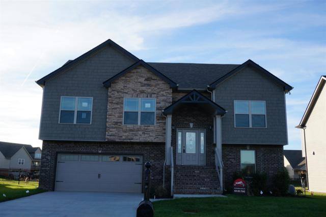 146 Hickory Wild, Clarksville, TN 37043 (MLS #1916193) :: Exit Realty Music City