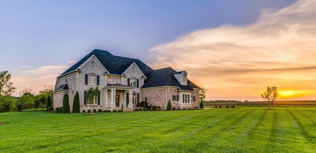 153 Waterford Dr, Manchester, TN 37355 (MLS #1916544) :: CityLiving Group