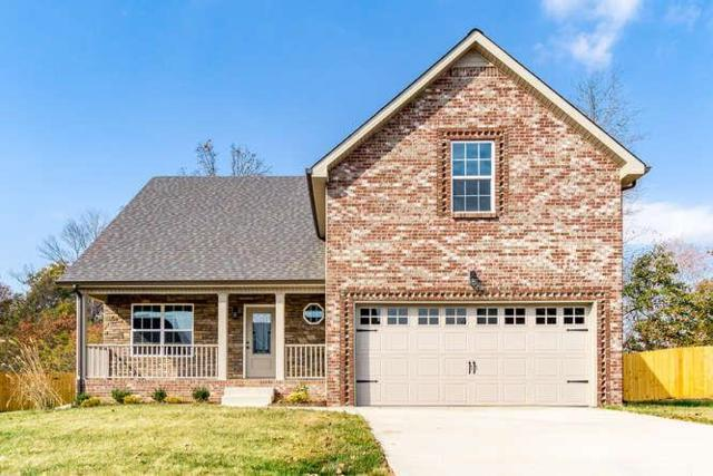 456 Mirren Circle, Clarksville, TN 37042 (MLS #1916640) :: NashvilleOnTheMove | Benchmark Realty