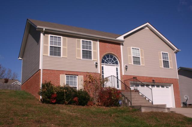 3141 Brook Hill Dr, Clarksville, TN 37042 (MLS #1916914) :: CityLiving Group