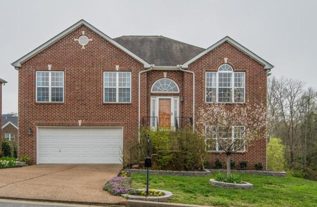 7229 Autumn Crossing Way, Brentwood, TN 37027 (MLS #1916936) :: CityLiving Group