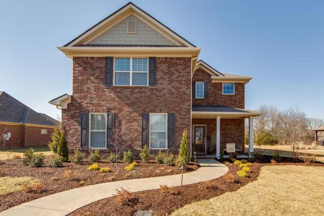 238 Carellton Drive, Gallatin, TN 37066 (MLS #1918158) :: NashvilleOnTheMove   Benchmark Realty