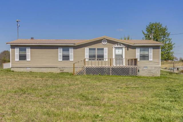 51 Sandy Dr, Summertown, TN 38483 (MLS #1918384) :: Exit Realty Music City