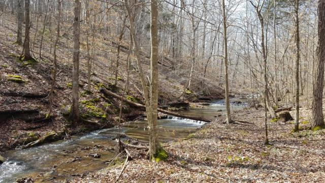 0 Pack Road Lot 1, White Bluff, TN 37187 (MLS #1922069) :: DeSelms Real Estate