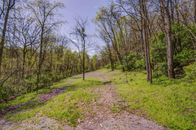 751 Dry Creek Rd, Goodlettsville, TN 37072 (MLS #1922105) :: FYKES Realty Group