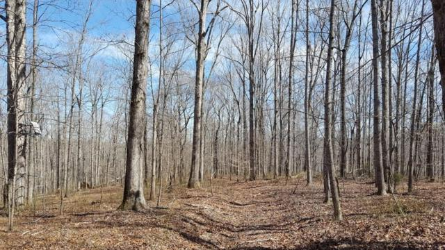 0 Pack Rd Lot 4, White Bluff, TN 37187 (MLS #1922433) :: DeSelms Real Estate