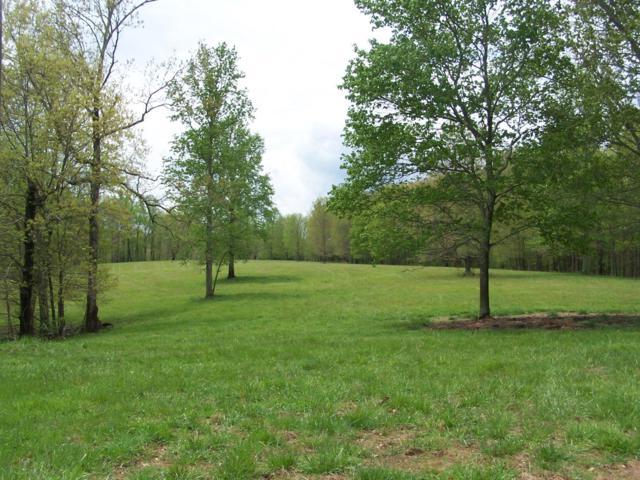 0 Jackson Hollow Rd, Goodspring, TN 38460 (MLS #1922980) :: Keller Williams Realty