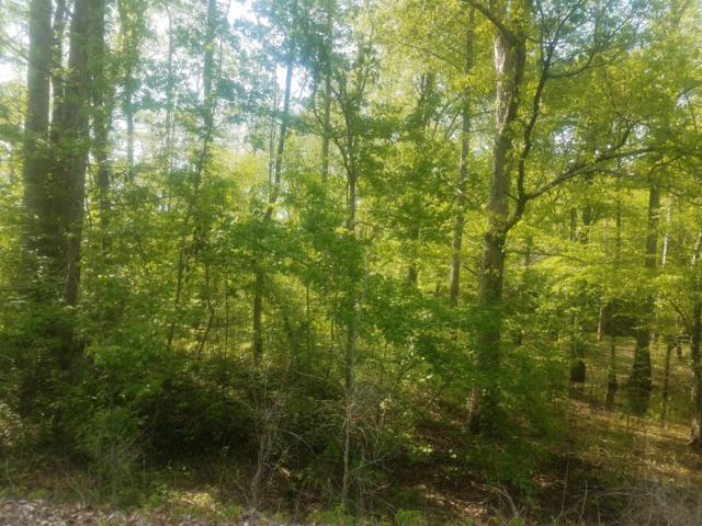 2 Britt Landing Rd W Of, Lobelville, TN 37097 (MLS #1923252) :: HALO Realty