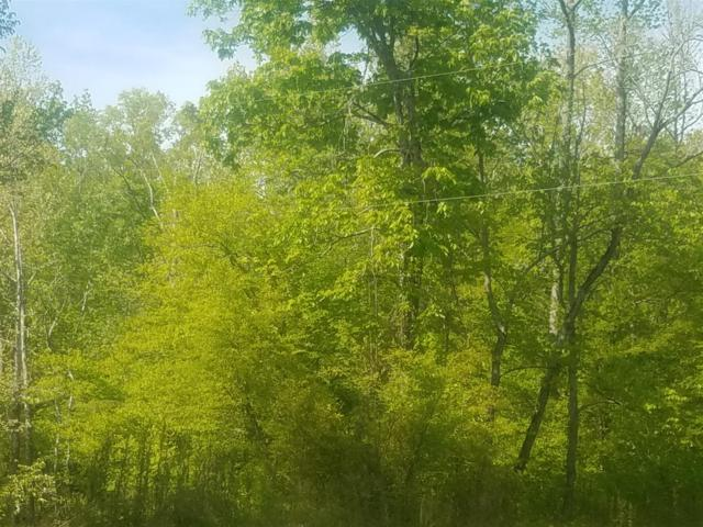 3 Britt Landing Rd W Of, Lobelville, TN 37097 (MLS #1923258) :: Nashville on the Move