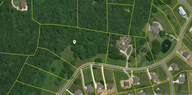 4431 Ivan Creek Dr (117), Franklin, TN 37064 (MLS #1923326) :: NashvilleOnTheMove   Benchmark Realty