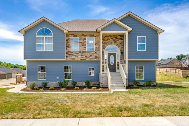317 Liberty Park, Clarksville, TN 37042 (MLS #1923526) :: John Jones Real Estate LLC