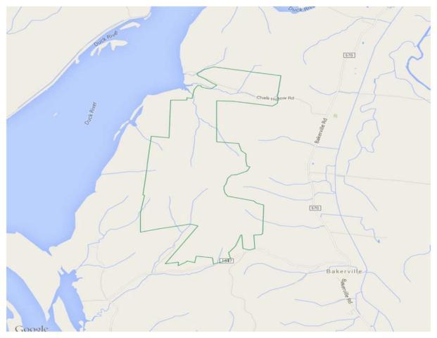 0 Sycamore Landing Road, Waverly, TN 37185 (MLS #1923731) :: The Easling Team at Keller Williams Realty