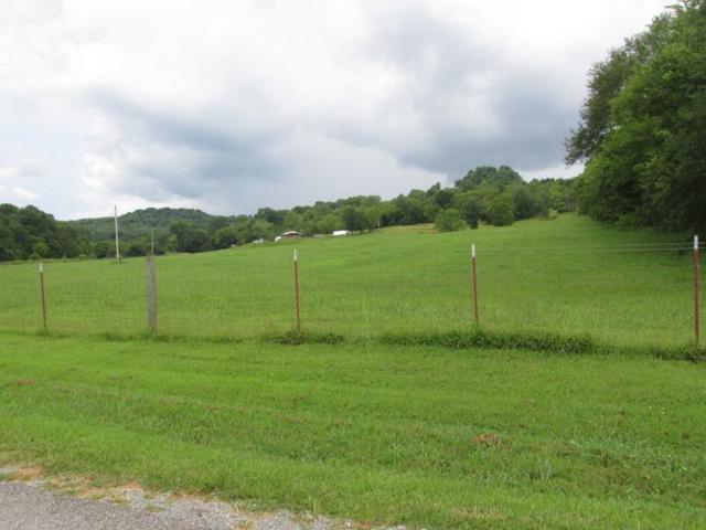 392 Fuss Hollow Rd, Petersburg, TN 37144 (MLS #1924148) :: Christian Black Team