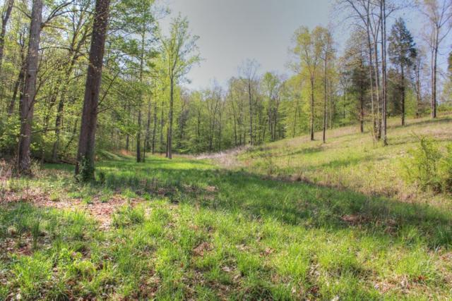 0 Sandy Rd, Dover, TN 37058 (MLS #1924458) :: HALO Realty