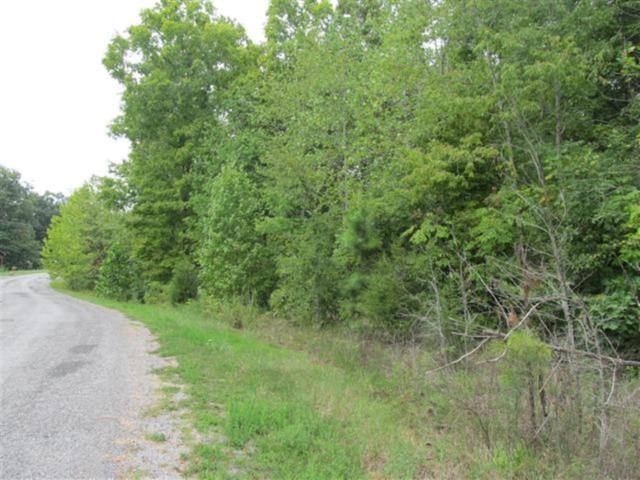 0 Twin Oaks Rd, Dover, TN 37058 (MLS #1926147) :: Nashville on the Move