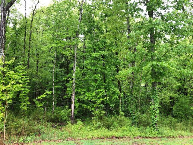0 Rehobath Rd, College Grove, TN 37046 (MLS #1927770) :: Group 46:10 Middle Tennessee