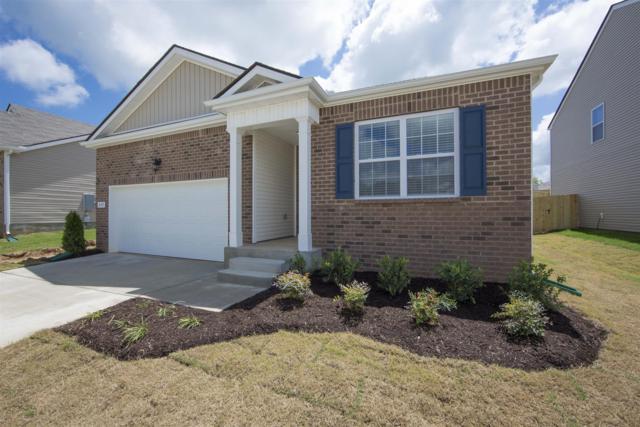 204 Autumn Terrace Ln -Lot 155, Clarksville, TN 37040 (MLS #1927855) :: REMAX Elite