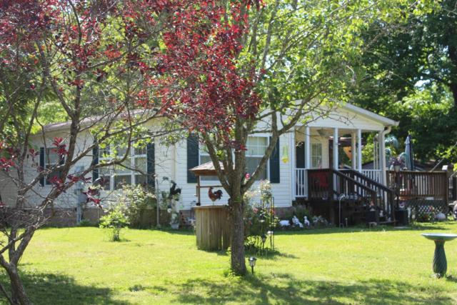 101 Fox Squirrel Dr, Dover, TN 37058 (MLS #1929268) :: CityLiving Group