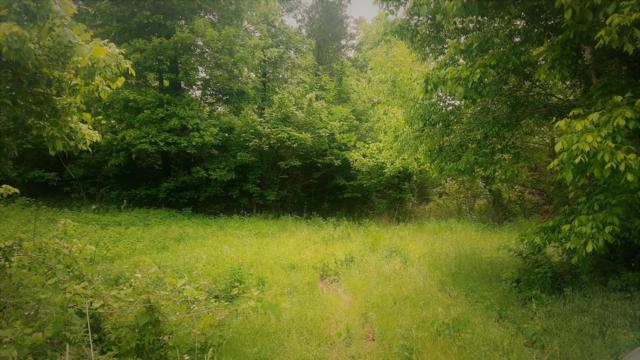 0 Highway 49, Vanleer, TN 37181 (MLS #1930417) :: Hannah Price Team