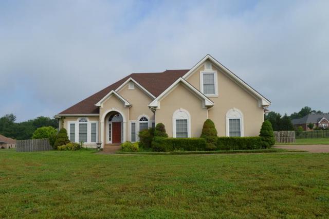 812 Little Springs Rd, Clarksville, TN 37040 (MLS #1930591) :: DeSelms Real Estate