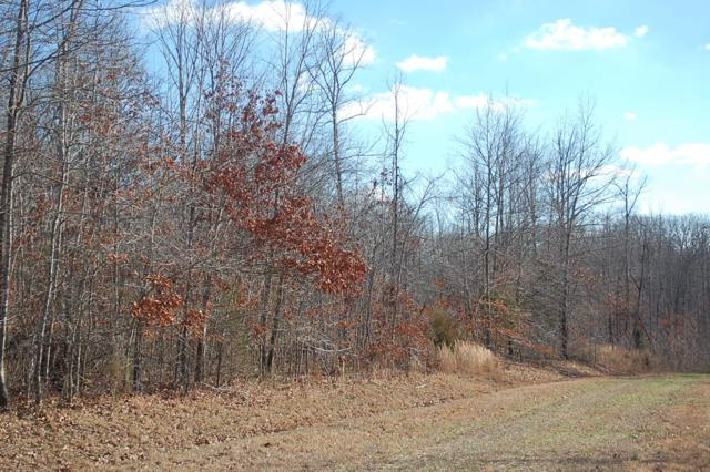 0 Wards Chapel Road, Manchester, TN 37349 (MLS #1930775) :: Nashville on the Move