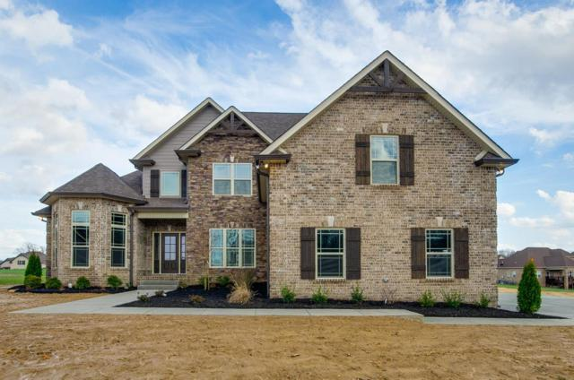 1131 Kingston Ln, Greenbrier, TN 37073 (MLS #1931006) :: John Jones Real Estate LLC