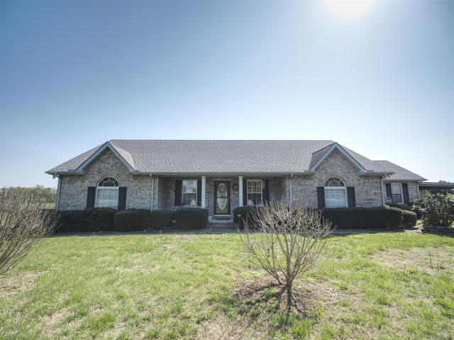 217 Harsh Ln, Castalian Springs, TN 37031 (MLS #1931065) :: John Jones Real Estate LLC