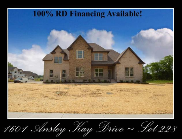 1601 Ansley Kay Drive - Lot 228, Christiana, TN 37037 (MLS #1931462) :: REMAX Elite