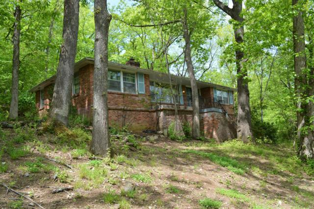 894 Forest Acres Dr, Nashville, TN 37220 (MLS #1931654) :: The Miles Team | Synergy Realty Network
