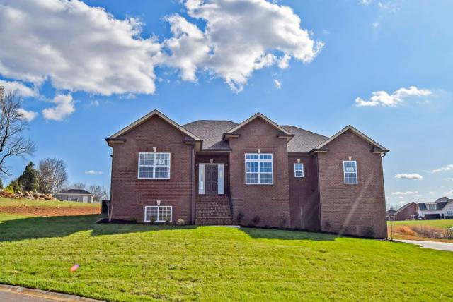 991 Red Bluff Way (Lot 28), Adams(Clarksville), TN 37010 (MLS #1932432) :: Ashley Claire Real Estate - Benchmark Realty