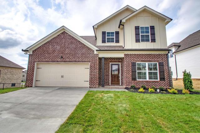 5785 Napa Valley Drive, Smyrna, TN 37167 (MLS #1932488) :: DeSelms Real Estate