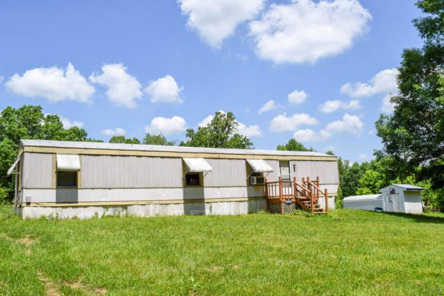 9802 Epperson Springs Rd, Westmoreland, TN 37186 (MLS #1934046) :: Hannah Price Team