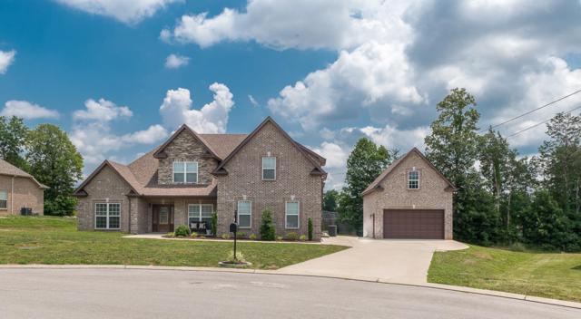 1120 Rivercrest Dr, Murfreesboro, TN 37129 (MLS #1935902) :: CityLiving Group