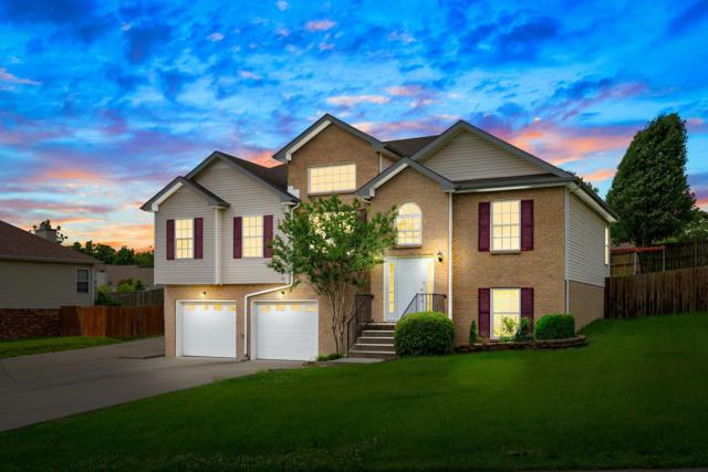 3392 Shivas Rd, Clarksville, TN 37042 (MLS #1936474) :: EXIT Realty Bob Lamb & Associates