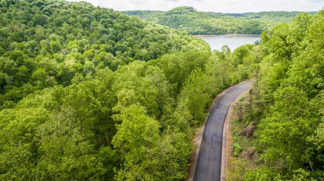 0 Lakeview Dr, Smithville, TN 37166 (MLS #1936900) :: CityLiving Group