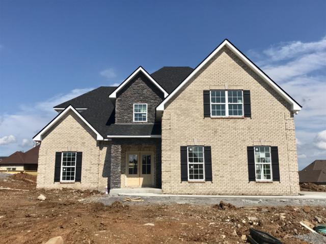 1123 Sycamore Leaf Way, Murfreesboro, TN 37129 (MLS #1937276) :: Berkshire Hathaway HomeServices Woodmont Realty
