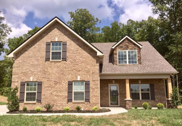 1006 Sycamore Leaf Way, Murfreesboro, TN 37129 (MLS #1937282) :: Berkshire Hathaway HomeServices Woodmont Realty