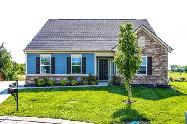 2703 Lockwood Ct, Murfreesboro, TN 37128 (MLS #1937796) :: EXIT Realty Bob Lamb & Associates