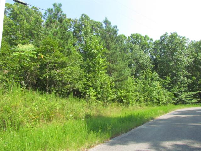 0 Grandview Lake Rd, Estill Springs, TN 37330 (MLS #1940162) :: REMAX Elite