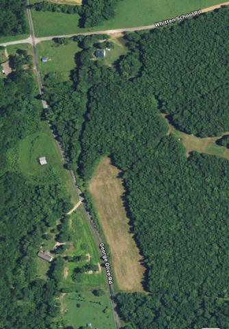 0 George Olive Rd, Iron City, TN 38463 (MLS #1941075) :: Team Wilson Real Estate Partners