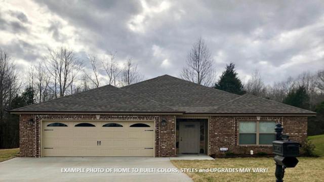 133 Rossview Place, Clarksville, TN 37043 (MLS #1941519) :: REMAX Elite