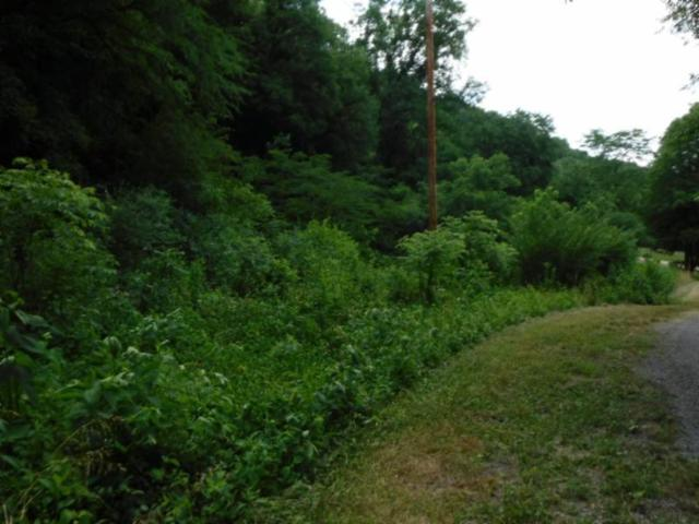 8 .55Ac Acorn Ln, Gainesboro, TN 38562 (MLS #1941525) :: Team Wilson Real Estate Partners