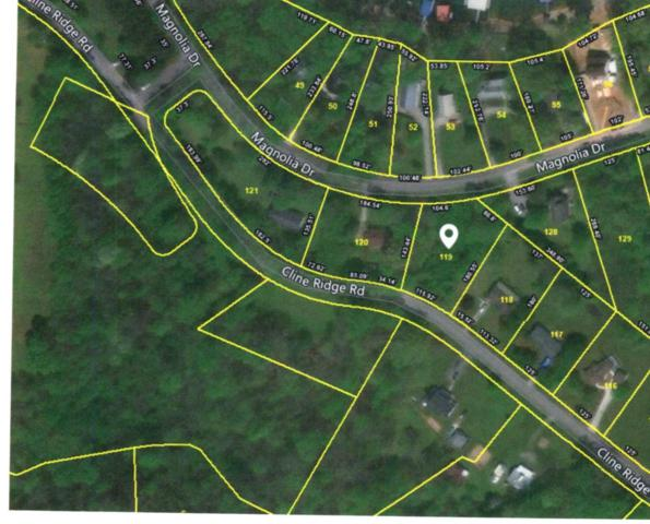 0 Magnolia Dr Lot 119, Winchester, TN 37398 (MLS #1941608) :: Ashley Claire Real Estate - Benchmark Realty