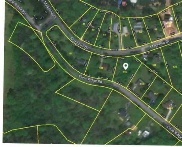 0 Magnolia Dr Lot 119, Winchester, TN 37398 (MLS #1941608) :: Nashville On The Move