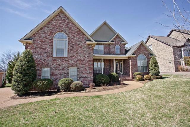 1037 Somerset Downs Blvd, Hendersonville, TN 37075 (MLS #1941765) :: FYKES Realty Group