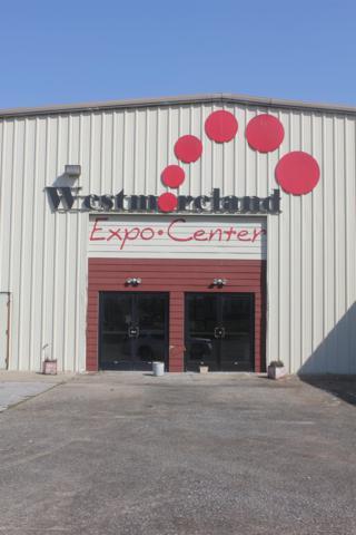 4011 Fleetwood Drive, Westmoreland, TN 37186 (MLS #1941949) :: RE/MAX Choice Properties